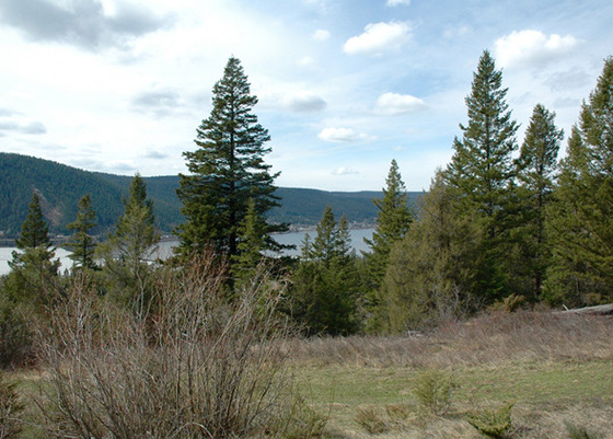 Prime Lake View Acreage - 5 Minutes South of Williams Lake
