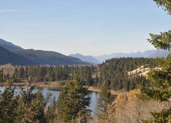 Stunning Acreage with Spring, Creek, Lake & River Frontage - Columbia Valley, BC