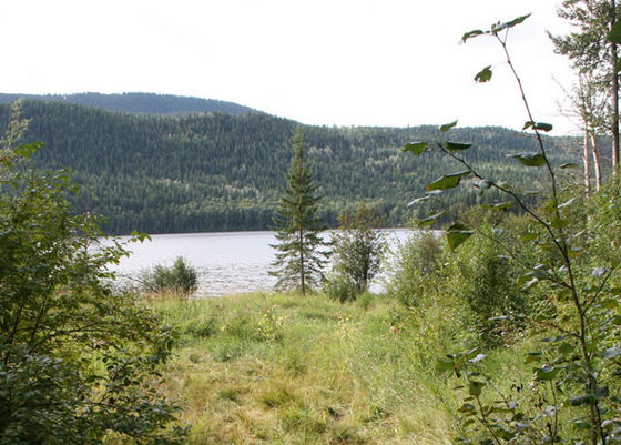 Affordable Lakefront Lot - Hawkins Lake