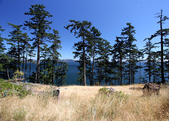 Sidney Island Oceanfront - Strata Lot 50 - Southern Gulf Islands, BC
