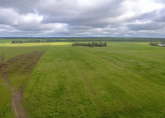 2,093 Acre Cattle Ranch with Ranch Home - Chetwynd BC