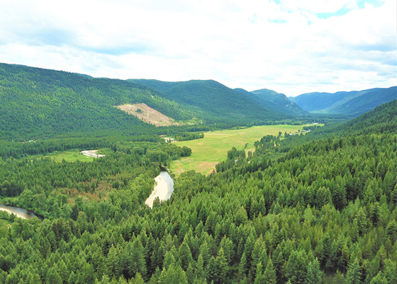Private Outdoorsman's Acreage Only Minutes to Town - Beaverdell, BC