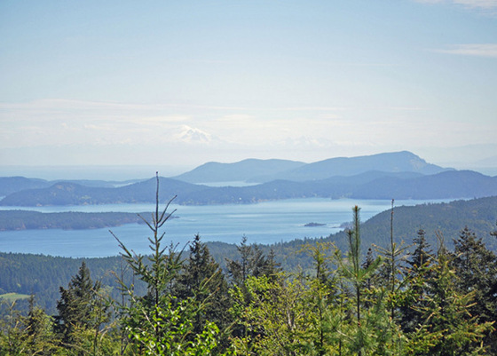 345.2 Acre Ocean View Property - Salt Spring Island, BC