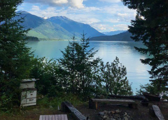 Affordable Lakefront Cabin - Lillooet Lake, Pemberton, BC