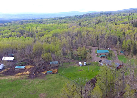 Trophy Lakefront Hobby Farm Oasis With Industrial Sized Shop - 10 Mins From Chetwynd