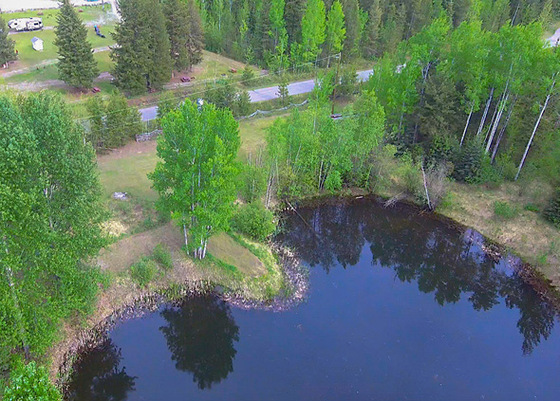 Two Unique Conjoined Residential Lots with Natural Spring Fed Lake - Quesnel, BC