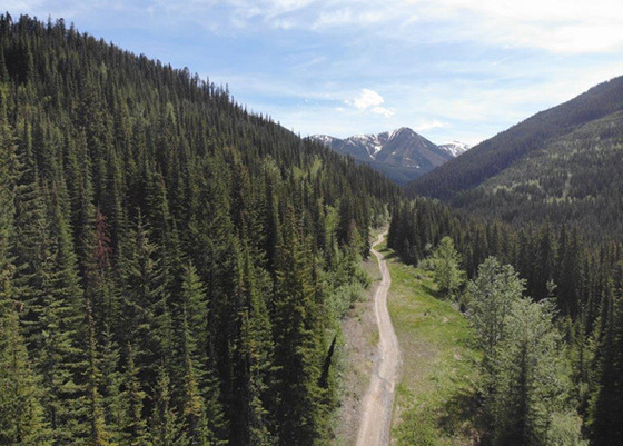 Backcountry Acreage with 2 Creeks - Purcell Mountains, BC