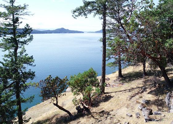 Saturna Island Oceanfront