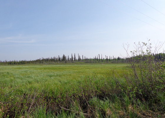 265 Acres, Fort St. James - Subdivideable Highway Frontage with Large Creek