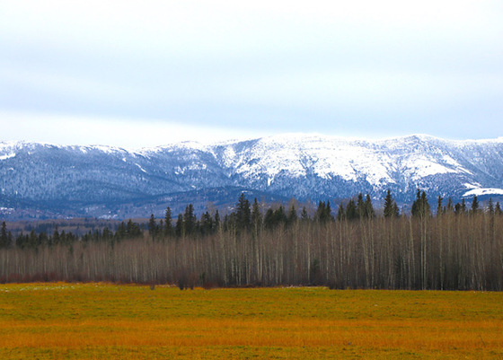 Outdoorsman's Paradise on 317 Acres of Beautiful Farmland - Beryl Prairie, BC