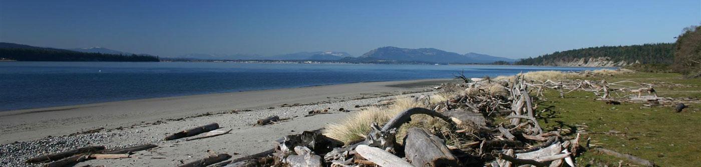 Landquest oceanfront
