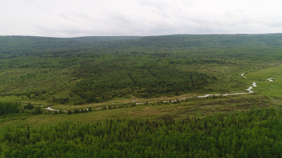 840 acres on 23 Titles - Chetwynd Area
