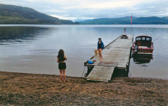 2 Lakefront Cabins on 2 Titles - Trembleur Lake, BC