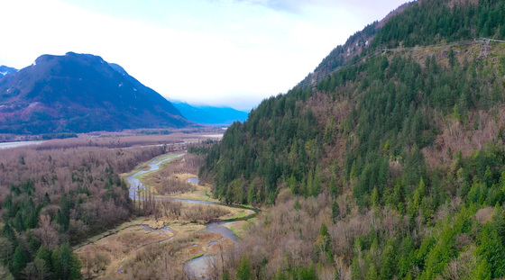 Very Rare 37 Acre Recreational Parcel Located in the District of Kent - 1.5 Hour Drive From Vancouver