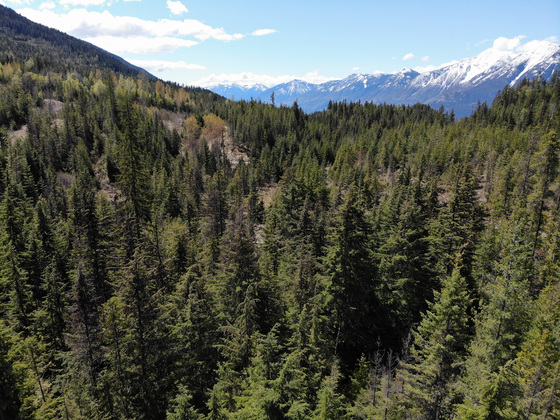 Backcountry Acreage - East Shore Kootenay Lake