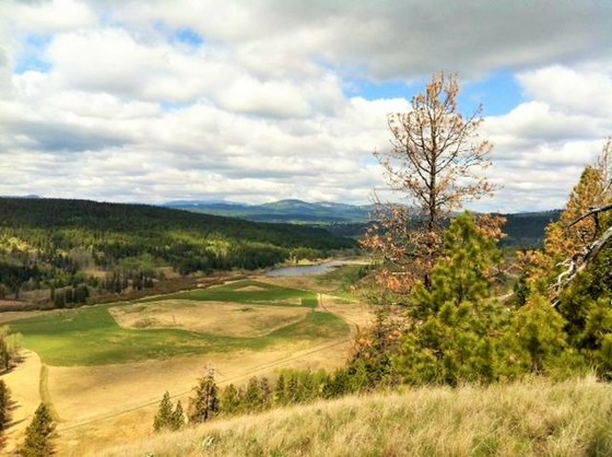 Large Private Acreage Backing onto Crown Land - Merritt, BC