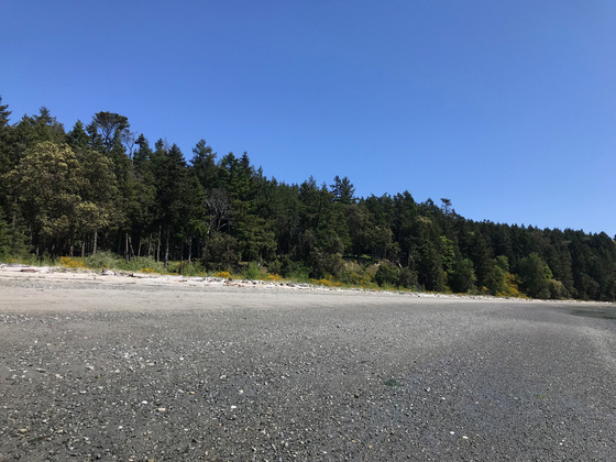 Sidney Island Oceanfront - Strata Lot 19 - Southern Gulf Islands, BC