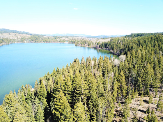 Large Lakefront Acreage with Subdivision Potential - Bridge Lake, BC