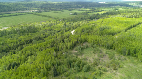 Hobby Farm with Mighty Views - Rural Prince George