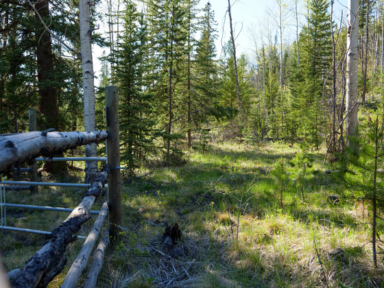 Bridge Creek Acreage - Interlakes Area - South Cariboo