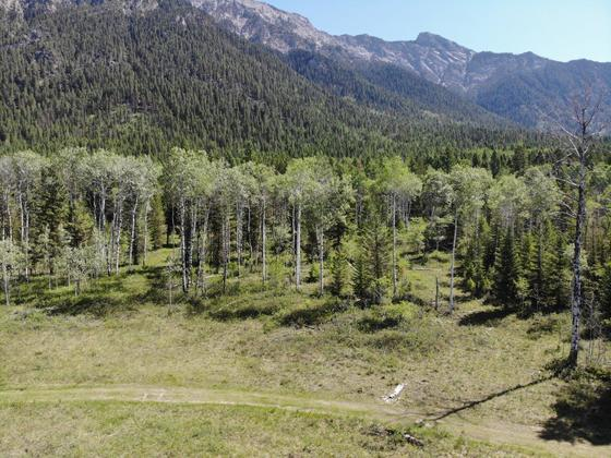 High Quality Acreage at the Foot of the Rocky Mountains - Edgewater, BC