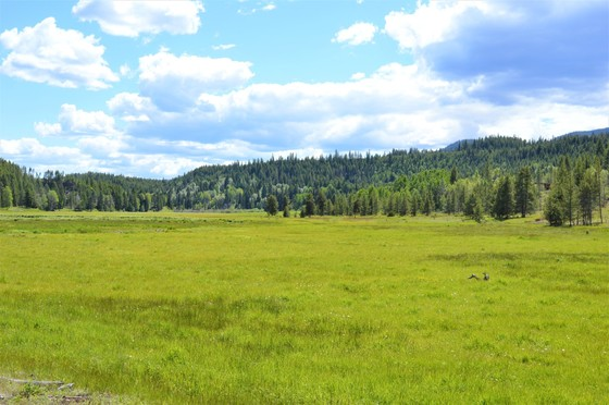 Large Acreage with Meadows Surrounded by Crown Land - Princeton, BC
