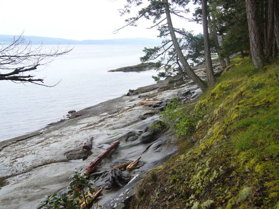 Affordable Low Bank Waterfront Lot- De Courcy Island