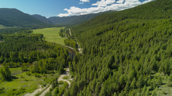Group Purchase or Re-Sale Opportunity - Beaverdell, BC