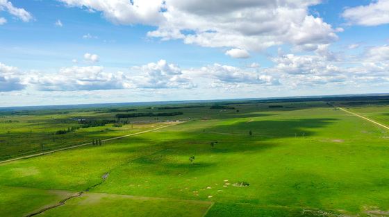 11,000 Acre Cattle Ranch on 20 Deeded Titles - Wonderful Investment Opportunity - Fort St John, BC