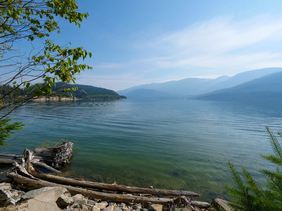 Arrow Lakeshore Acreage - Edgewood, BC
