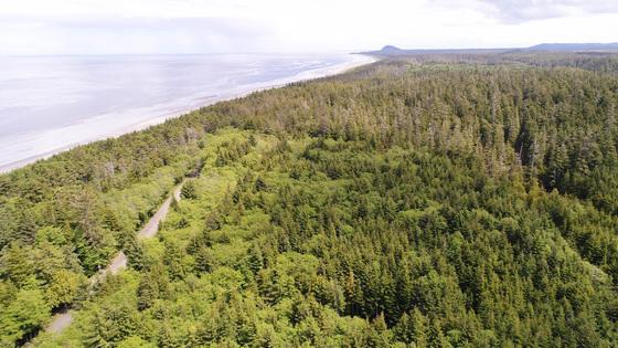 Oceanfront Naikoon Estates - Haida Gwaii