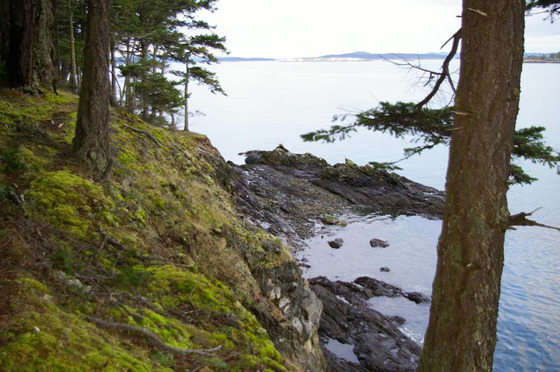 Sidney Island Oceanfront - Strata Lot 49 - Southern Gulf Islands, BC
