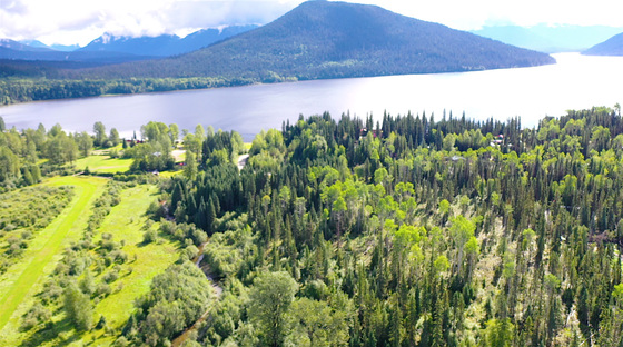 8 Private Acres in the Beautiful Region of Bowron Lake, BC