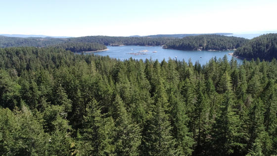 Road Accessible Gulf Island Acreage - Cortes Island, BC