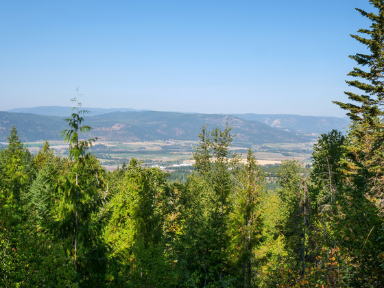 Development Acreages - Spallumcheen, BC