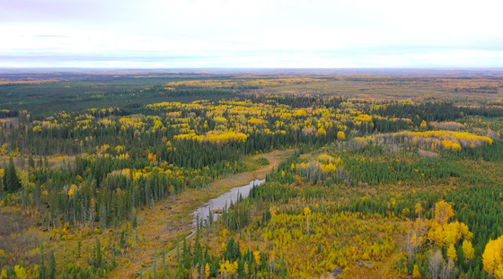 793 Acre Recreational/Hunting Property with Ample Wildlife - Fort St John, BC
