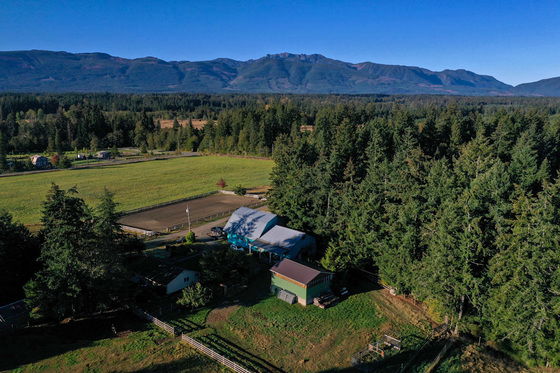 Picturesque Equestrian Acreage - Coombs, BC