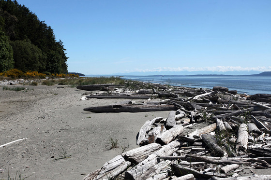 Sidney Island Oceanfront - Strata Lot 100 - Southern Gulf Islands