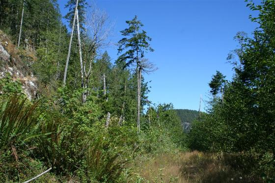 Sakinaw Ridge Large Acreage - Pender Harbour, BC