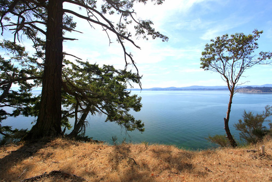 Sidney Island Oceanfront - Strata Lot 91 - Southern Gulf Islands