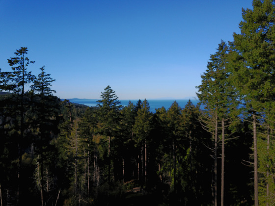 Ten Acre Ocean View Wilderness Property Two Hours from Vancouver - Galiano Island