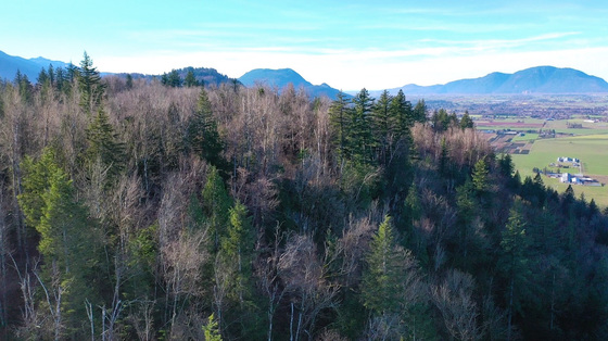 Private 40-Acre Parcel with Vast Mountain Views Perched High Above the Fraser Valley - Chilliwack, BC