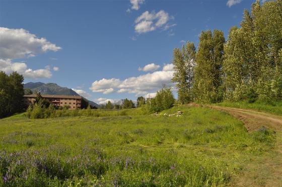 Thumb fernie development acreage 03