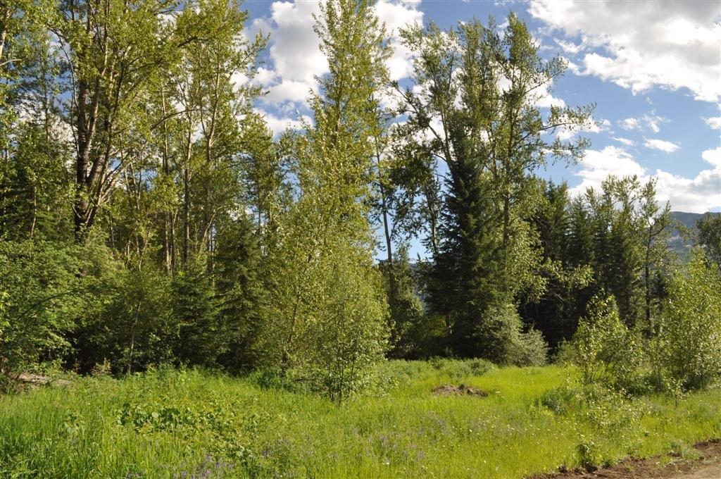Fernie development acreage 07