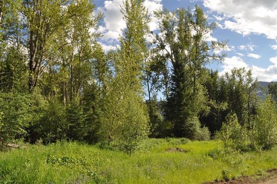 Thumb fernie development acreage 07