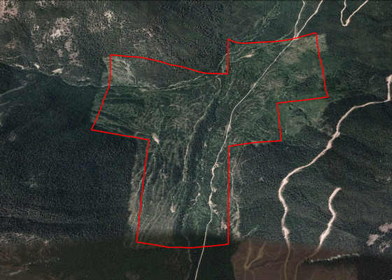 Backcountry Acreage with Two Creeks - Purcell Mountains, BC