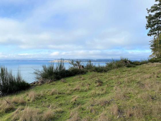 Sidney Island Oceanfront - Strata Lot 85 - Southern Gulf Islands, BC