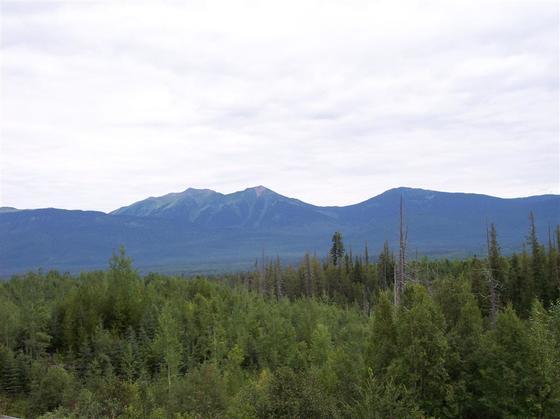 Semi-Remote 137 Acres - Penny, BC