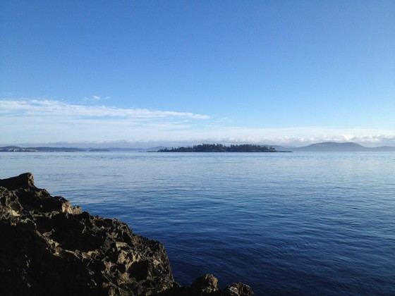 Sidney Island Oceanfront Acreage - Strata Lot 46 - Southern Gulf Islands, BC