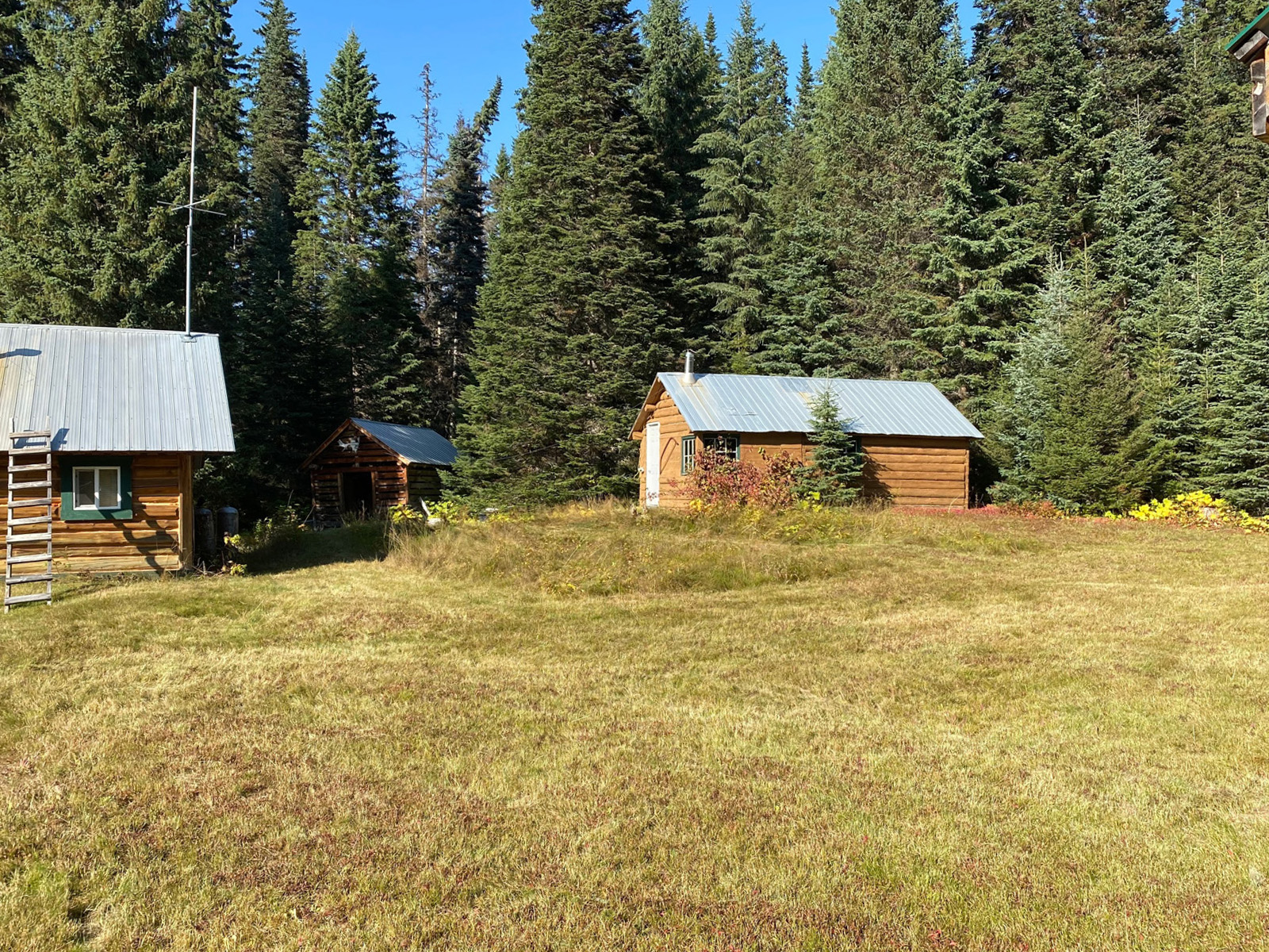 Dome creek outfitters 13
